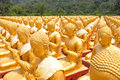 Golden buddha buddha memorial park nakorn nayok thailand Royalty Free Stock Photography