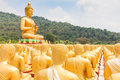 Golden buddha buddha memorial park nakorn nayok thailand Royalty Free Stock Photo