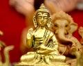 Golden Buddha. Royalty Free Stock Photo