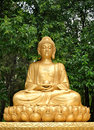 Golden buddha statue meditating Stock Images