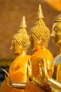 Golden Buddha statues Stock Image