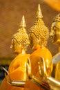 Golden Buddha statues Stock Image