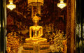 Golden Buddha statues in a Thai Buddhist temple. Royalty Free Stock Photo