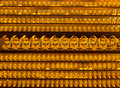 Golden buddha statues at Yakcheonsa Temple Stock Photos