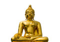Golden buddha on the white background Royalty Free Stock Image