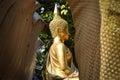 Golden Buddhist