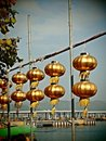 Golden Chinese lanterns under blue sky Stock Photography
