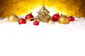 Golden christmas fir tree decoration with gold and red ornaments Royalty Free Stock Photo