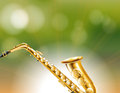 The golden conical-bore instrument Royalty Free Stock Photo