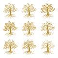 Golden decorative trees like olive and oak, ash maple isolated on white background