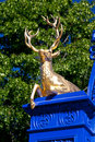 Golden Deer in the royal park Djurgarden,Stockholm Royalty Free Stock Photo