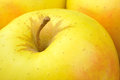 Golden delicious apple Stock Photos
