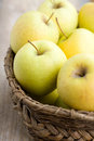 Golden Delicious apples Stock Images
