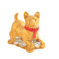 Golden dog with coins for decoration isolated on white Royalty Free Stock Photo