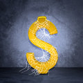 Golden dollar sign in spider web Royalty Free Stock Photo