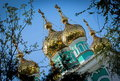 Golden domes is on the st nicholas cathedral in almaty kazakhstan Royalty Free Stock Image