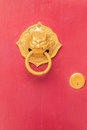 Golden door knocker in the shape of lion with ring on a red wood Royalty Free Stock Photo