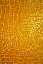 Golden dragon texture Royalty Free Stock Images