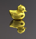 Golden duck isolated bright gold toy or bird with a dark background Royalty Free Stock Images