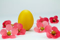 Golden easter egg between pink flowers Royalty Free Stock Photo