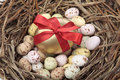 Golden easter eggs in bird nest over white Stock Photos