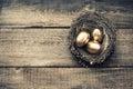 Golden easter eggs in birds nest vintage toned Royalty Free Stock Photo