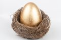 Golden egg in bird nest a the Royalty Free Stock Image