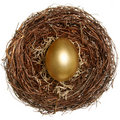 Golden egg financial concept Stock Photo