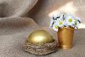 Golden egg in nest and daisies Royalty Free Stock Photo