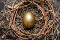 Golden egg in nest on dark vintage wooden background Royalty Free Stock Photos