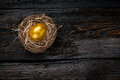 Golden egg in a nest Royalty Free Stock Photo