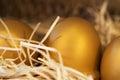 Golden egg in nest feel look lucky Stock Photography