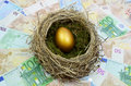 Golden egg in nest laying on a bed of money Royalty Free Stock Image