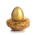 Golden egg in nest one eggs the isolated on white Royalty Free Stock Photos