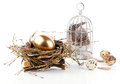 Golden egg in nest space for text on white background Royalty Free Stock Photography