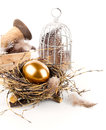 Golden egg in nest space for text on white background Stock Images