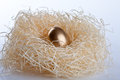 Golden egg in nest success business metaphor Stock Image