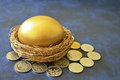 Golden egg in nest a surrounded by croatian coins Stock Images
