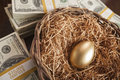 Golden egg in nest and thousands of dollars surrounding with on table Royalty Free Stock Image