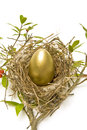 Golden egg in nest a vertical shot of a a on a white background Royalty Free Stock Image