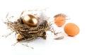 Golden egg in nest on white background Royalty Free Stock Image