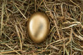 Golden egg nestled straw Royalty Free Stock Photo