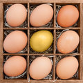 Golden egg among normal eggs in wooden box symbol of standing out or elite Royalty Free Stock Photography