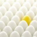 Golden egg among usual white eggs Stock Images