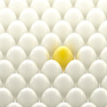 Golden egg among usual white eggs individuality background Stock Image