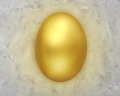 Golden egg white feathers Royalty Free Stock Photos