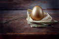 Golden egg on wooden table in straw nest closeup Stock Images
