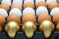 Golden eggs and chicken eggs duck Royalty Free Stock Image