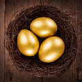 Golden eggs in the nest Royalty Free Stock Photo