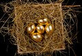 Golden eggs in a nest on black backgriound top view. Concept easter Royalty Free Stock Photo